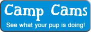 Camp Cams